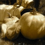 fall photographs, pumpkins