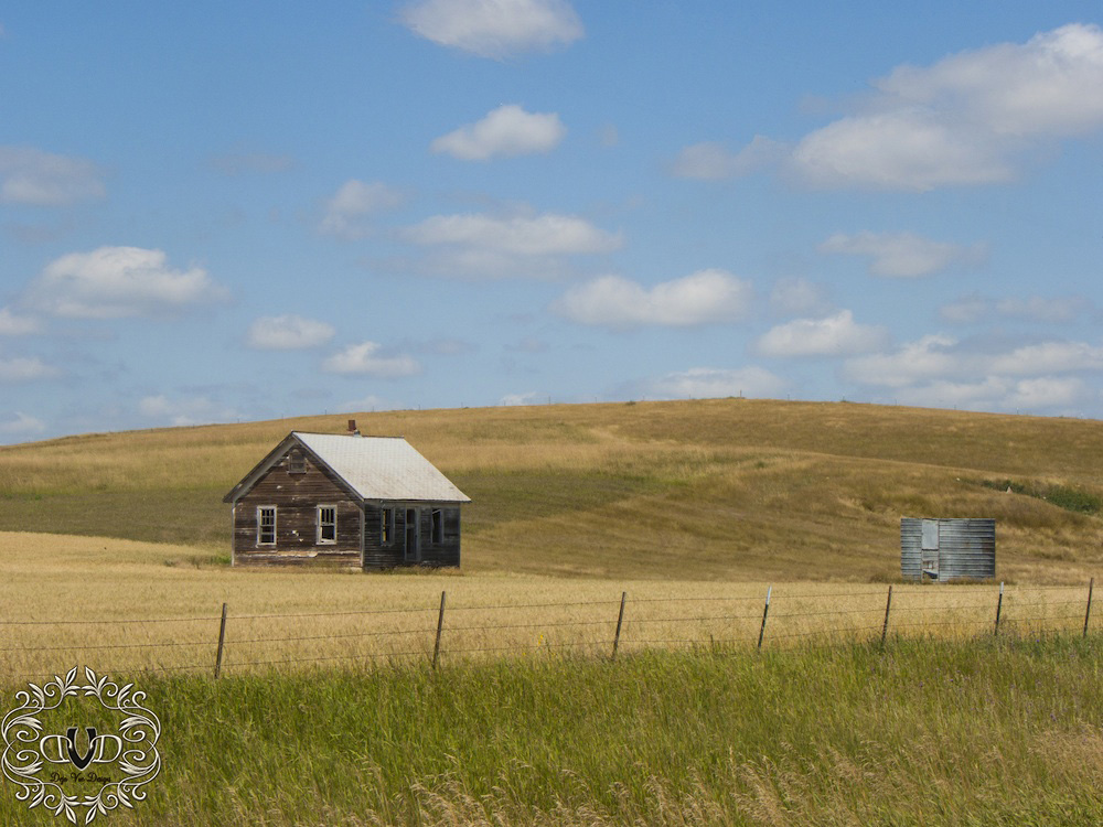 A drive in the country around Montana