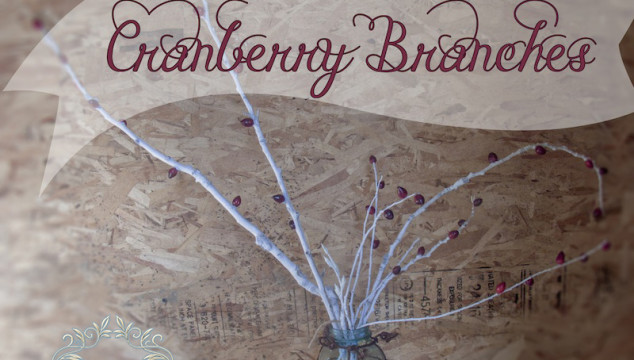 Diy Cranberry Branches