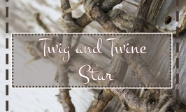 Twig and Twine Star