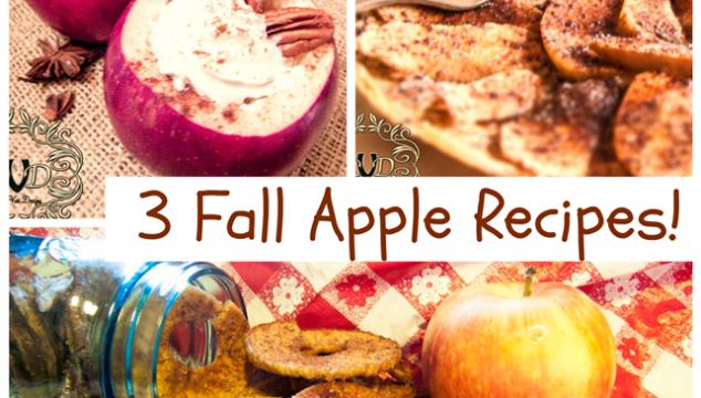 3 Fall Apple Recipes from Deja Vue Designs: apple flautas, apple chips, and hot buttered cider!