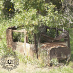 Montana Ramblin' (A Drive in the country)