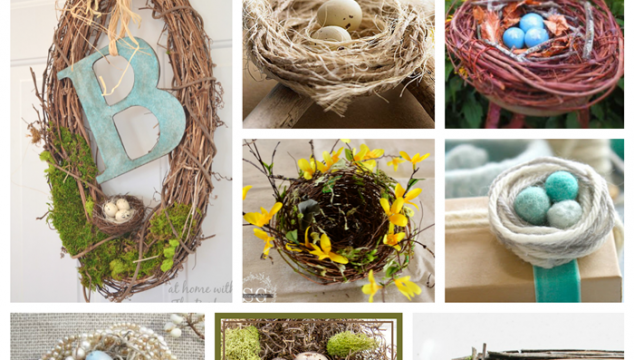 DIY Bird Nests 12 Unique Ideas